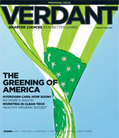 Verdant Magazine: Smarter Choices for Better Living